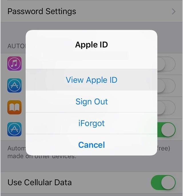 Apple kimliğini iPhonedan nasıl çözebilirim: ipuçları, öneriler, talimatlar 6